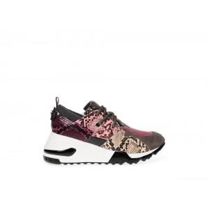 Clearance Sale - Steve Madden Women's Sneakers CLIFF Pink Snake
